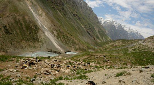 Bergé sur la route de Manali à Leh - Voyage à moto Transhimalayenne et Ladakh, Inde, Himalaya