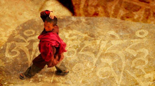 Moine ladakhi - Voyage à moto Transhimalayenne et Ladakh, Inde, Himalaya