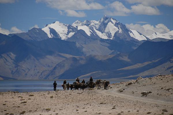 Nomade et chevaux au lac Tsomoriri - Voyage à moto Transhimalayenne et Ladakh, Inde, Himalaya