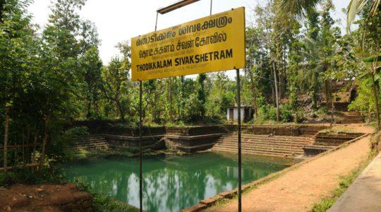 road-trip-moto-voyage-inde-sud-royal-enfield-kerala-karnataka-tamil-nadu- (5)