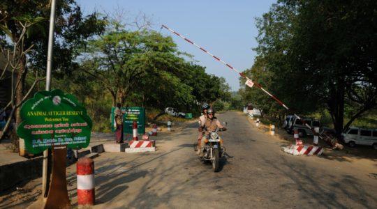 road-trip-moto-voyage-inde-sud-royal-enfield-kerala-karnataka-tamil-nadu-anaimalai-tiger-reserve
