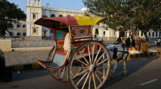 road-trip-moto-voyage-inde-sud-royal-enfield-kerala-karnataka-tamil-nadu-cheval-charette