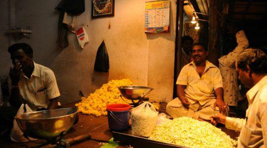 road-trip-moto-voyage-inde-sud-royal-enfield-kerala-karnataka-tamil-nadu-marche