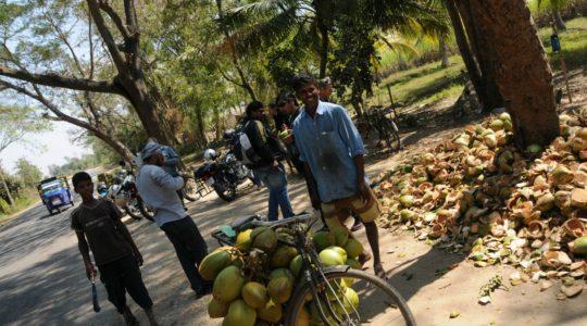 road-trip-moto-voyage-inde-sud-royal-enfield-kerala-karnataka-tamil-nadu-noix-coco