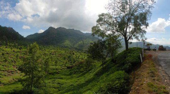road-trip-moto-voyage-inde-sud-royal-enfield-kerala-karnataka-tamil-nadu-panorama-route-the
