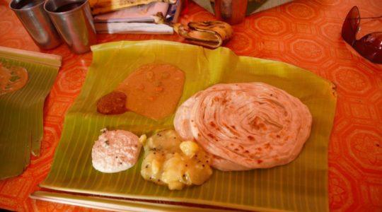 road-trip-moto-voyage-inde-sud-royal-enfield-kerala-karnataka-tamil-nadu-repas-keralais