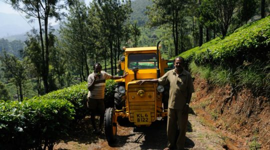 road-trip-moto-voyage-inde-sud-royal-enfield-kerala-karnataka-tamil-nadu-the-plantation-tracteur