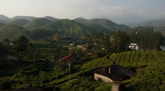 road-trip-moto-voyage-inde-sud-royal-enfield-kerala-munnar